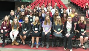 State Science and Technology Fair of Iowa Results