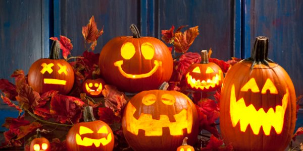Put your pumpkins to good use this Halloween - Kidmore End