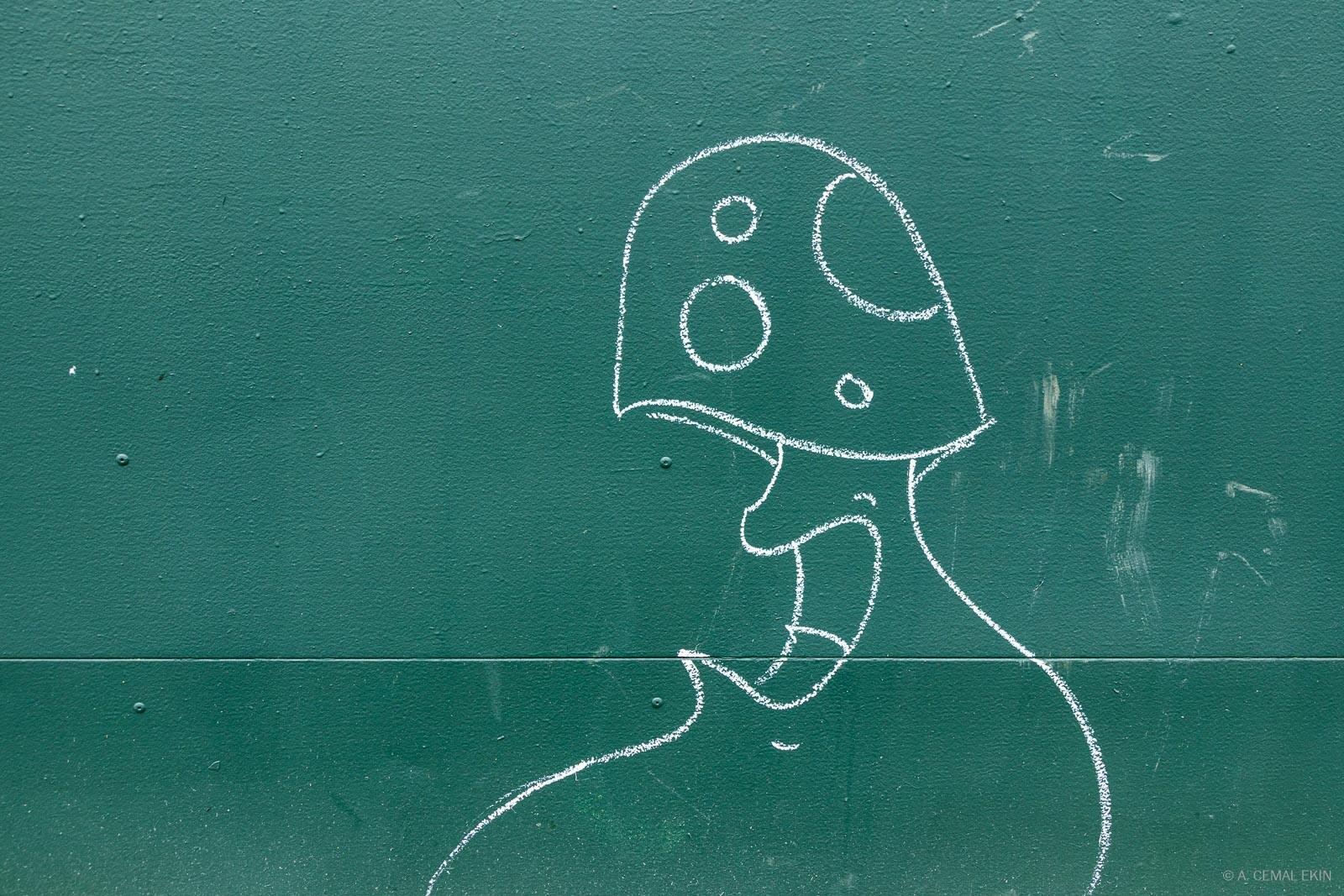At India Point Park, graffiti
