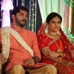 Anjali Nair Brother Ajay Wedding Reception photos 020