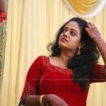 senthil krishna rajamani wedding reception photos 090