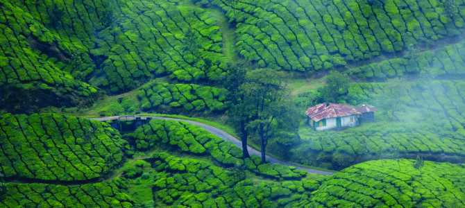 What You Can Expect From Ever Memorable Kerala Honeymoon Packages