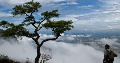 Nelliyampathy Hills – Palakkad – Kerala