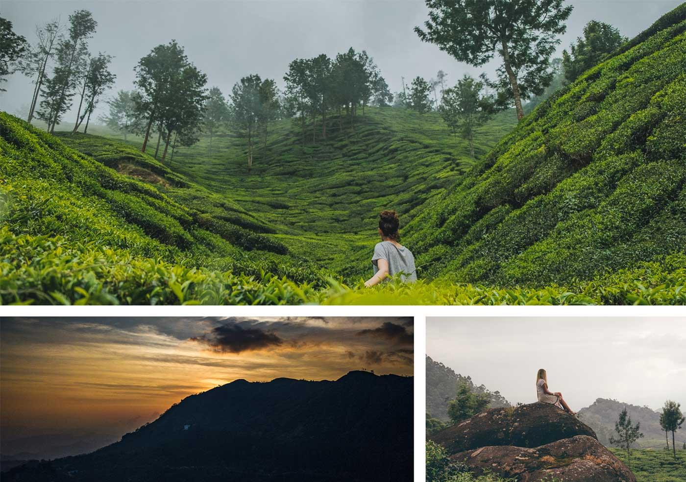 Blog Top 10 Honeymoon Destinations In Kerala