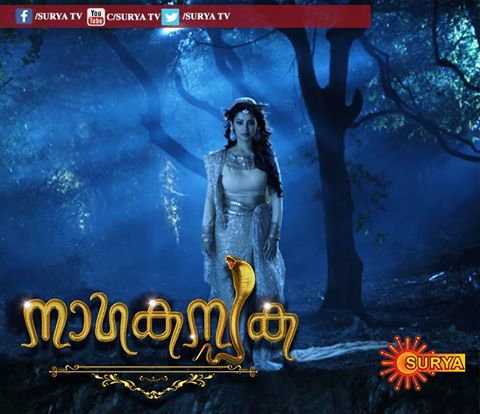 Image result for malayalam serial naga kanyaka