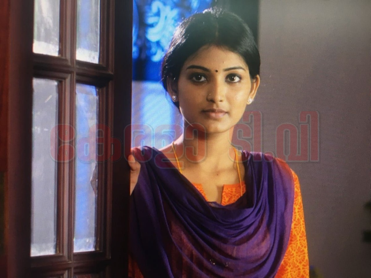 Neelakkuiyil serial hero name, heroine name, supporting star cast and story