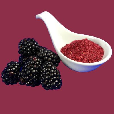 Fruchtpulver - Brombeerpulver