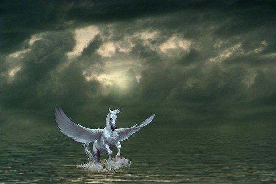 Pegasus Nedir? Pegasus Hakkında Bilgi