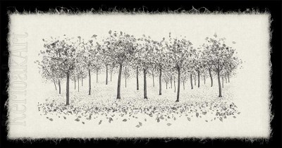 Orchard in monochrome