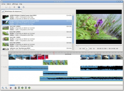 400px-Capture-PiTiVi_v0.13.0.1