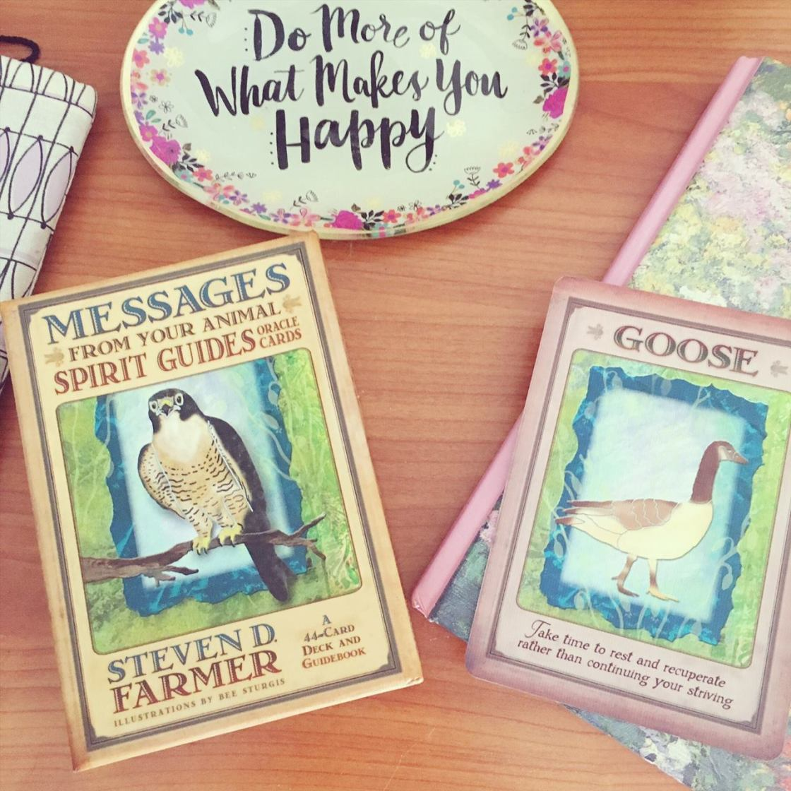 oracle cards, spirit animal, goose, steven d. farmer, do more of what makes you happy