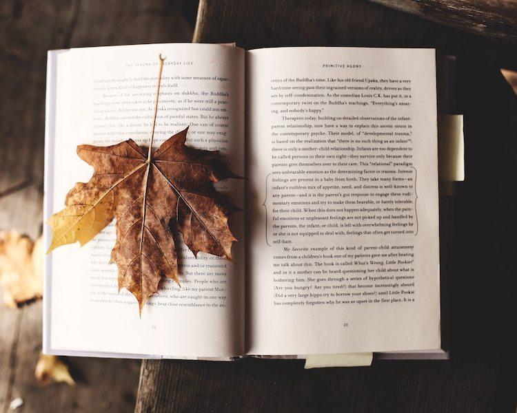 Herbst-Leseliste 2020