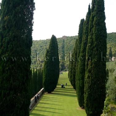 Villa Cetinale, a kert főtengelyét képező sétány, szemközt a Romitorio
