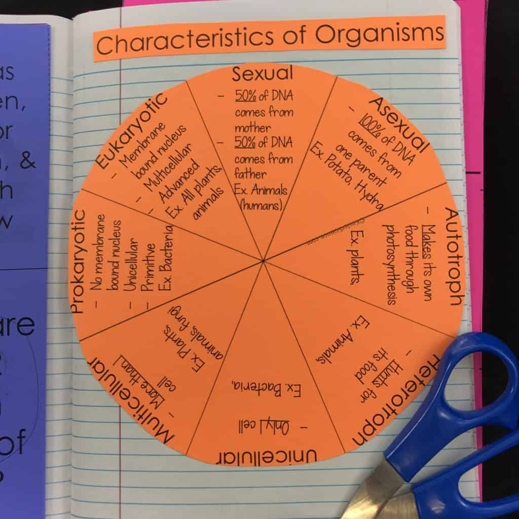 Characteristics Of Organisms Lesson Plan A Complete