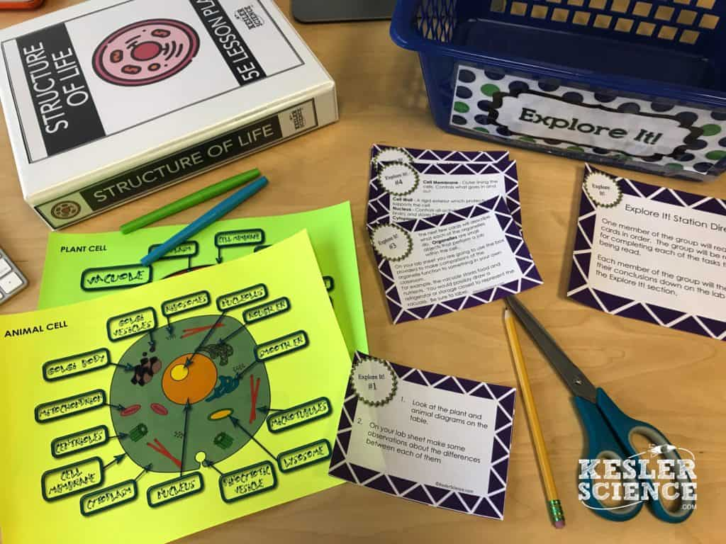 Plant And Animal Cells Lesson Plan A Complete Science