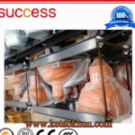 Ce Approved Double Cage Builders Hoist
