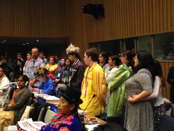 UN Indigenous Peoples Forum (by Ciwang Teyra)