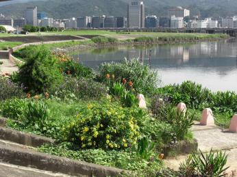 Keelung riverbank (by Rose Peng)