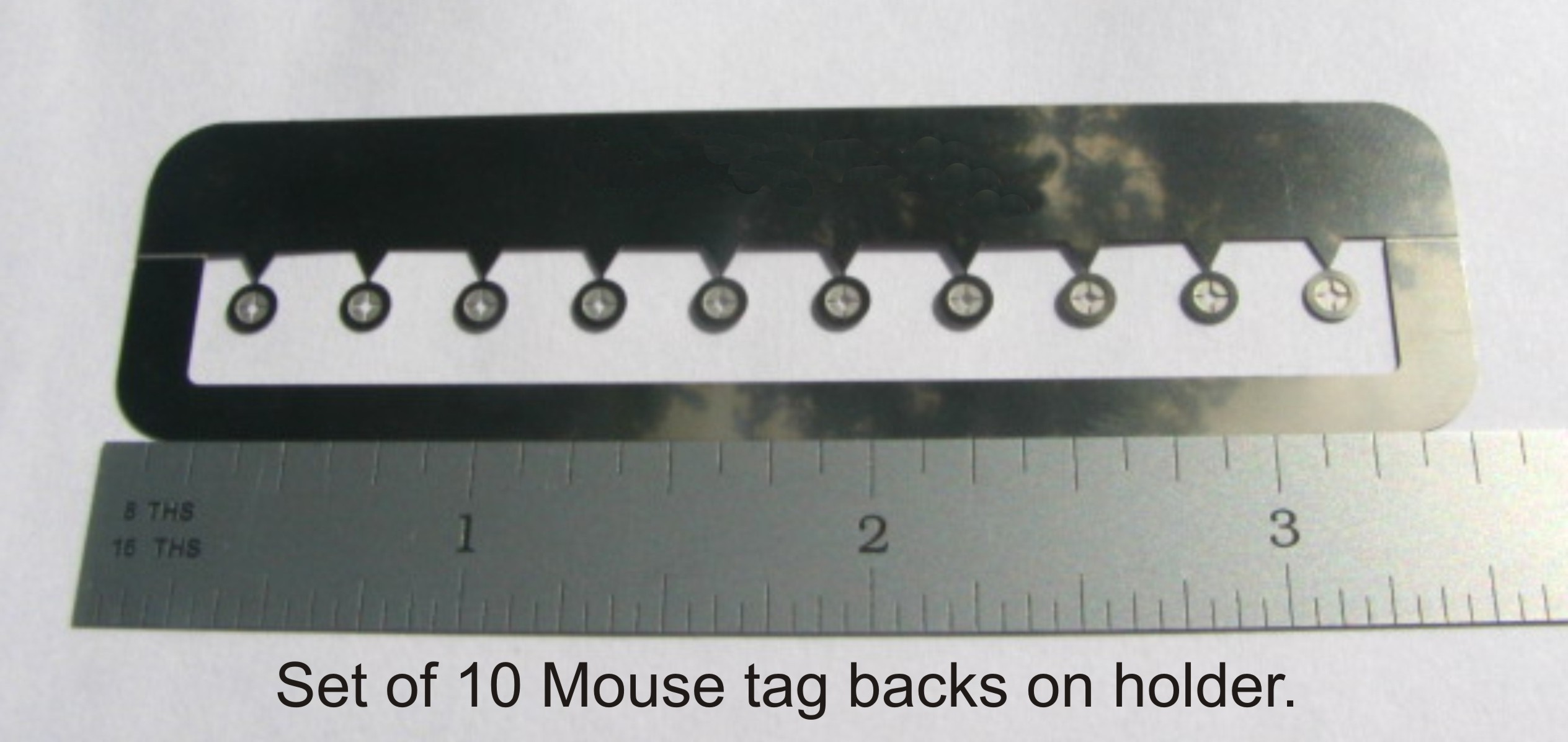 Mouse Ear Tags