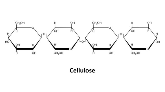 Cellulose | keto-vegan.com
