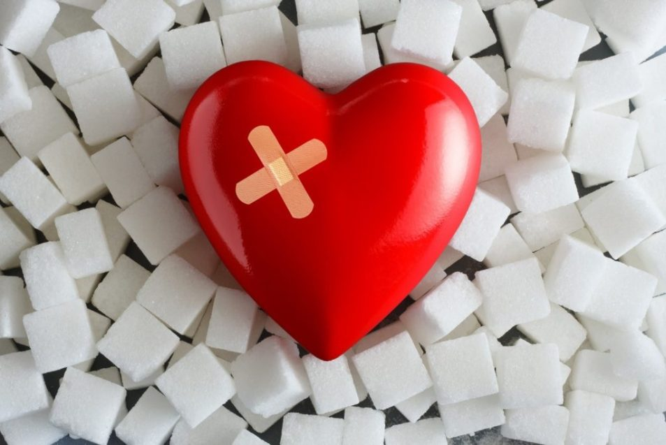 Cardiovascular Diseases are Caused by Excess Sugar Consumption