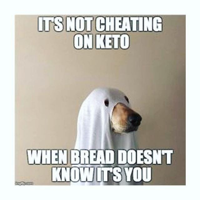 dog hiding in sheet cheating on keto