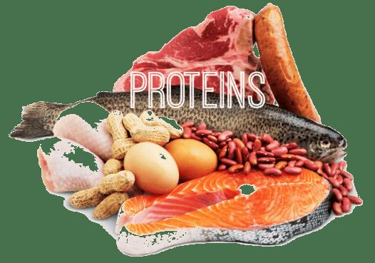 keto proteins
