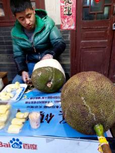 Jack fruit. So good! So giant and spikey!