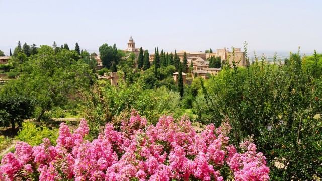 Visitar Alhambra