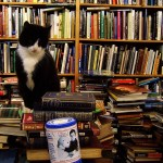Books I Read in 2013