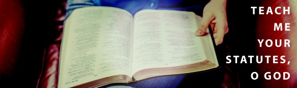 Psalm 119 Devotional - Teach Me Your Statues O Lord