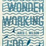 A Brief Review of The Wonder Working God by Jared C. Wilson