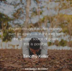 Timothy Keller Quotes Simple 100 Of The Best Timothy Keller Quotes  Anchored In Christ
