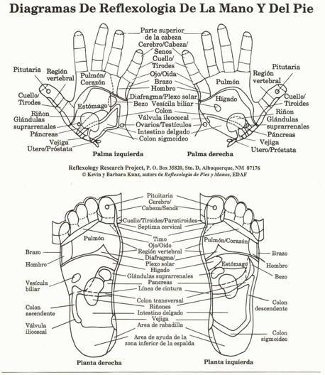 Korean Reflexology Research Summary