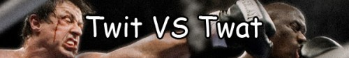 Twit vs Twat