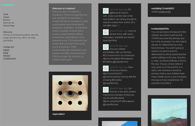 EVOLUTIVE 2 WordPress Theme