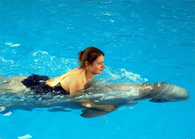 Swim with a Dolphin