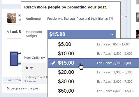 Facebook Set Maximum Budget