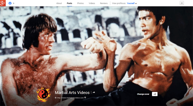 Martial Arts Videos on Google+