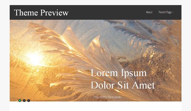Asteria Lite WordPress Theme