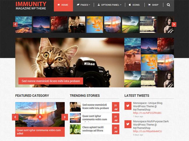 Immunity WordPress Theme