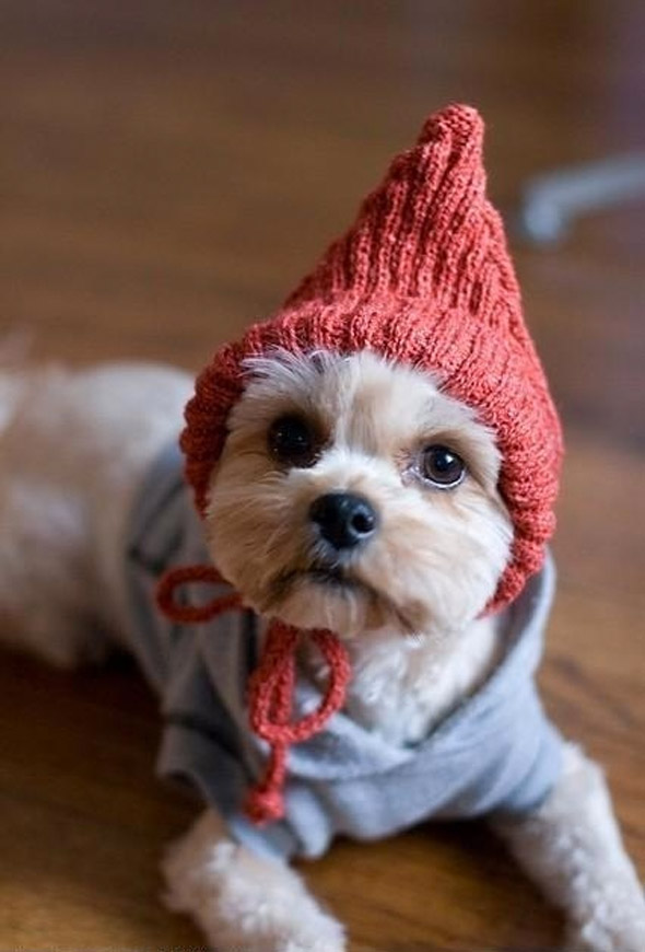Keeping Warm for Winter