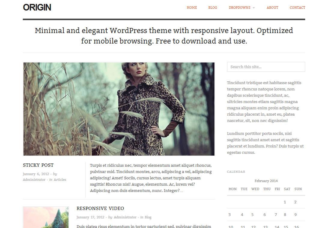 Origin WordPress Theme