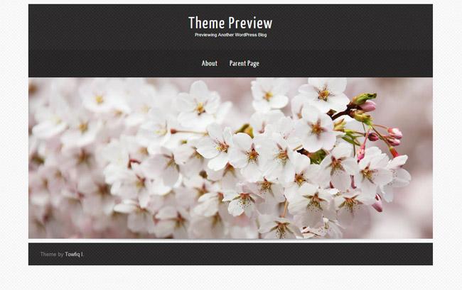 Theron Lite WordPress Theme