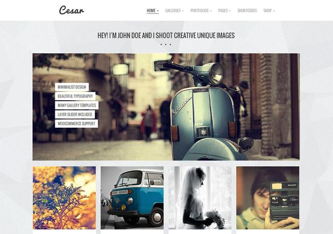 Cesar WordPress Theme