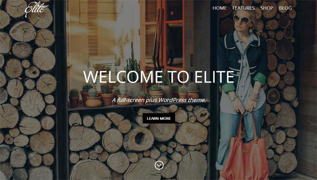 Elite WordPress Theme