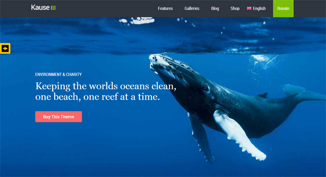 Kause WordPress Theme