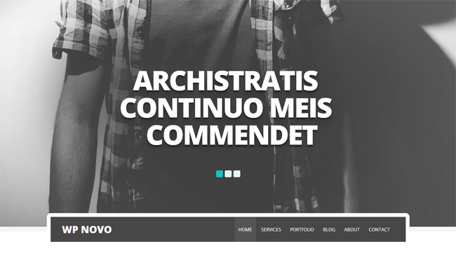 Novo WordPress Theme