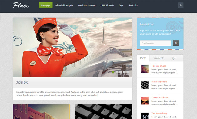 Place WordPress Theme