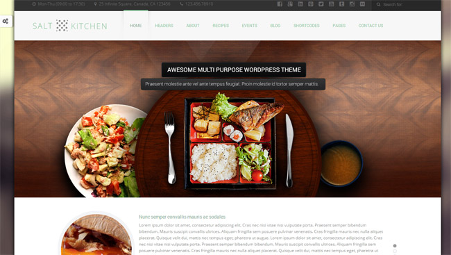 SaltKitchen WordPress Theme